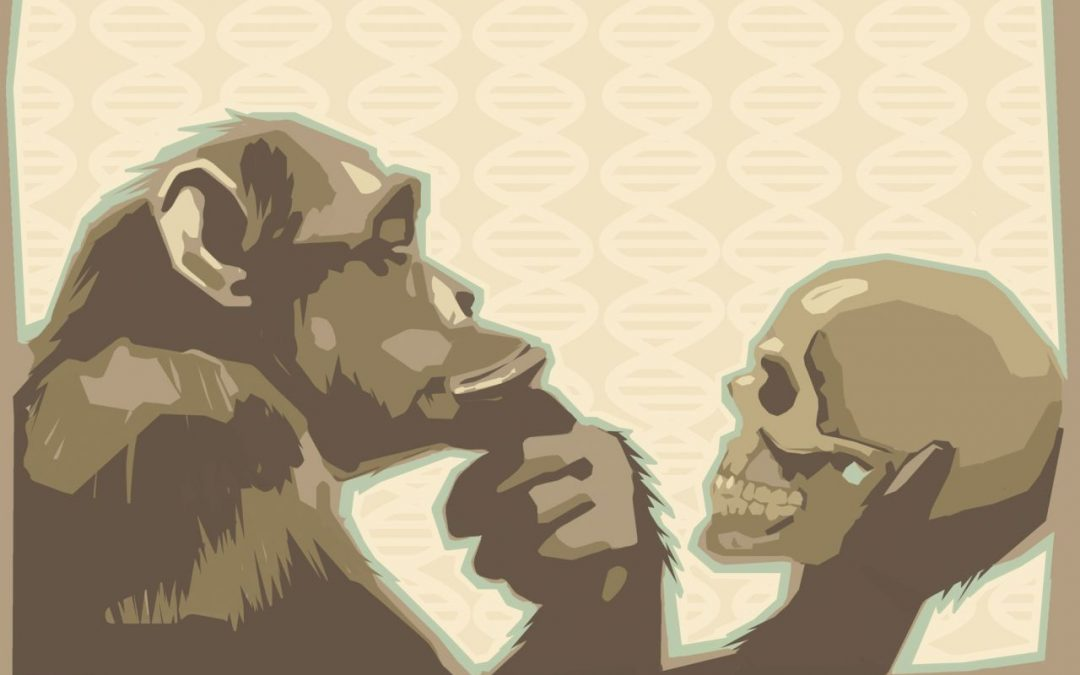 Why the Theory of Evolution is So-o Unscientific 4.8 (83)